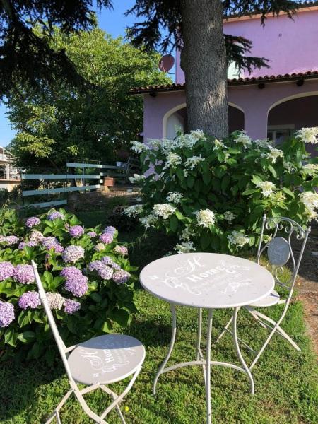 ortensie-giardino-fronte-tavolino
