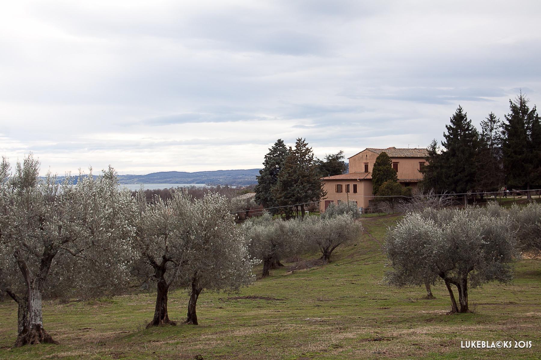 Vigna Del Lago37