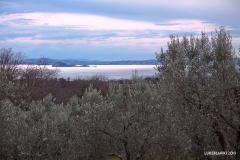 Vigna Del Lago42